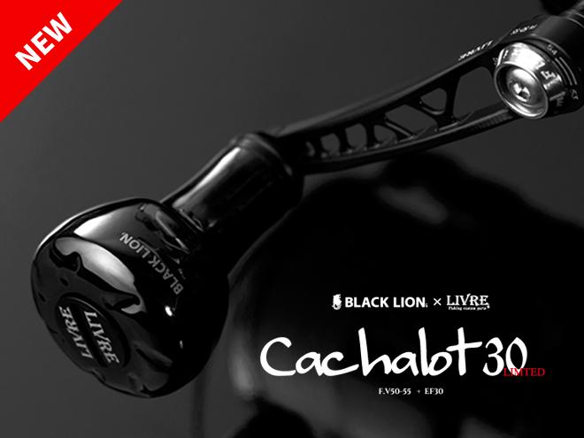 Cachalot 30_new