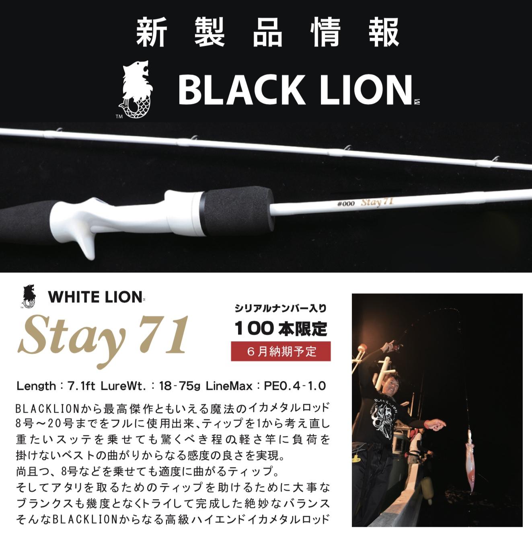 【 Stay71 ホワイトライオン限定モデル続々入荷 】